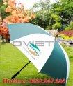 ô dù cầm tay – 13