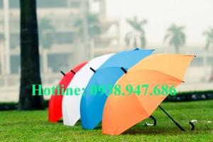 ô dù cầm tay – 06