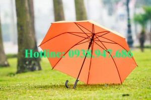 ô dù cầm tay – 08
